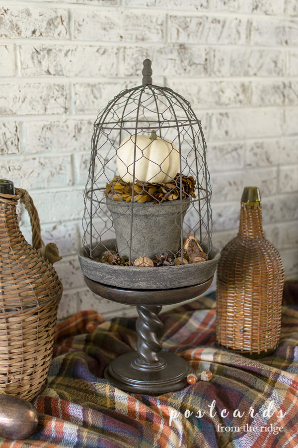 wicker demijohns and chicken wire cloche with fall decor on plaid blanket