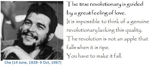 Che Guevara: Quotes of Great Latin American Revolutionary