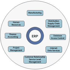 ERP Implementations - Verdantis