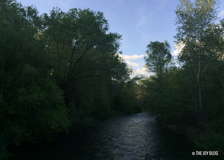 River surrounded by trees // www.thejoyblog.net