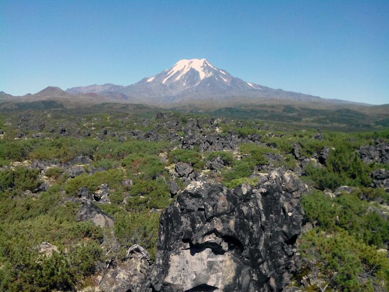 ичинский вулкан на камчатке