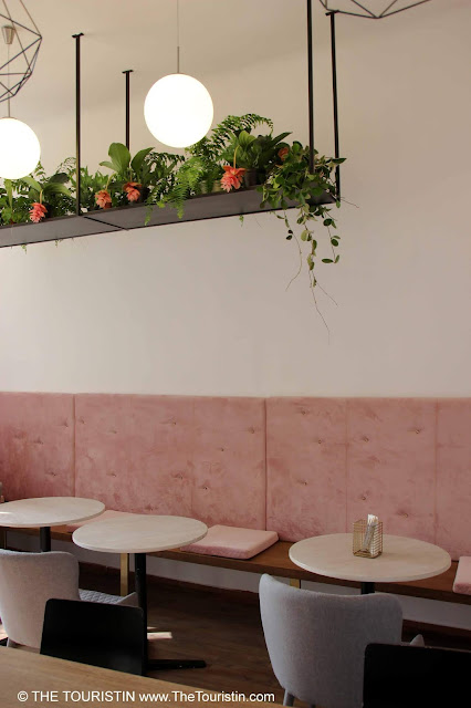 Soft light grey chairs and three white coffee house tables in front of a light pink wall sofa under a long hanging shelf carrying green and pink plants.
