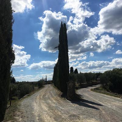 Le strade bianche de L'Eroica
