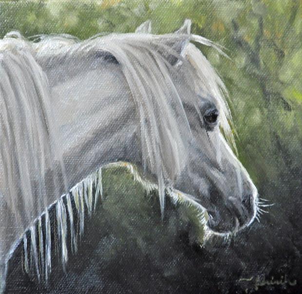Painted Life Equine Trio Three Of Horse