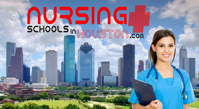BSN Salary in Houston