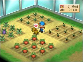 Harvest Moon Terbaik