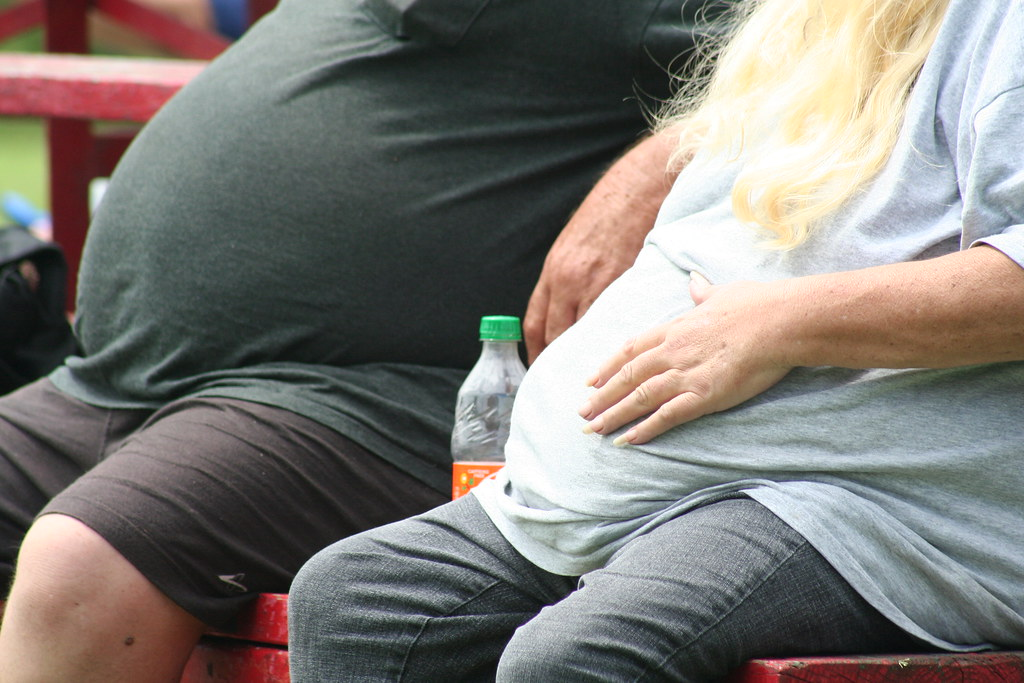 Lowering Heart Disease Risk Via Weight Management 2