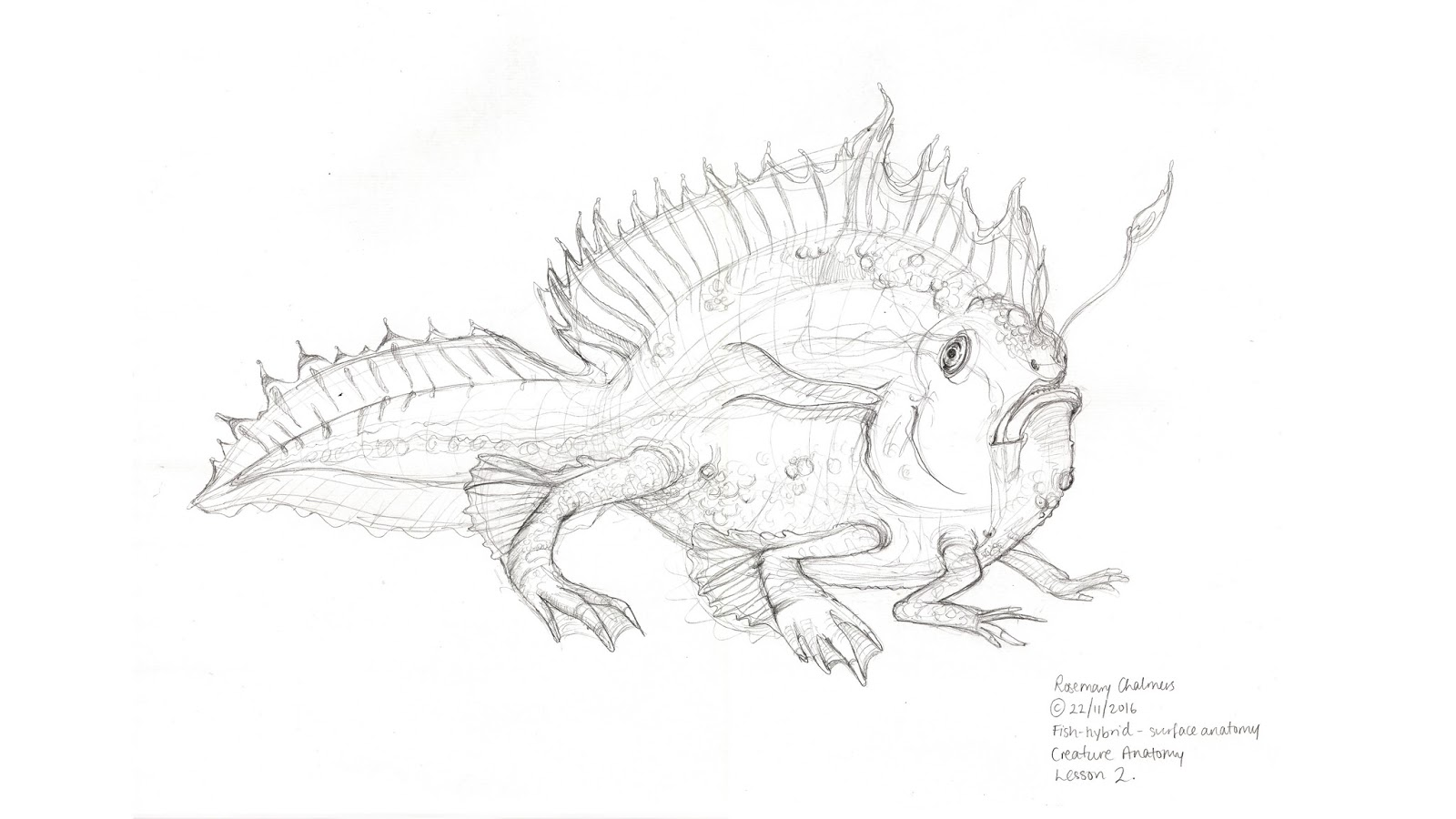 Rosemary Chalmers — concept art and illustration: Creature Anatomy ...