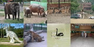 Zoological Parks in Punjab