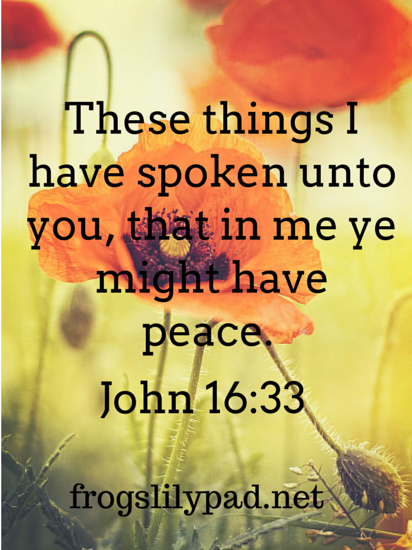 In Me Ye Might Have Peace {John 16:33}