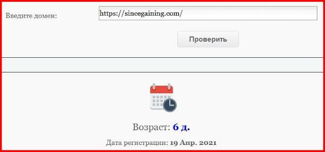 Настоящий возраст сайта sincegaining.com – 6 дней: