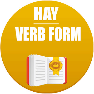 hay verb form in spanish