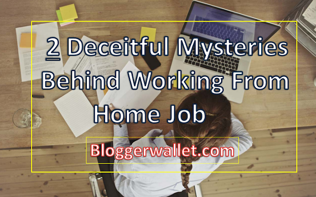 2 Deceitful Mysteries Behind Working From Home Job