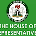 Local Government Tier Set To Be Removed From Tiers Of Government By House of Representatives