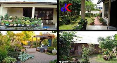 Menangkap peluang - bisnis dari pekarangan rumah yang sempit | bagian 2