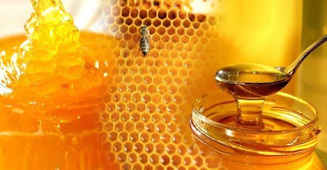 Διημερίδα μελισσοκομίας στο ΔΙΕΚ Επιδαύρου