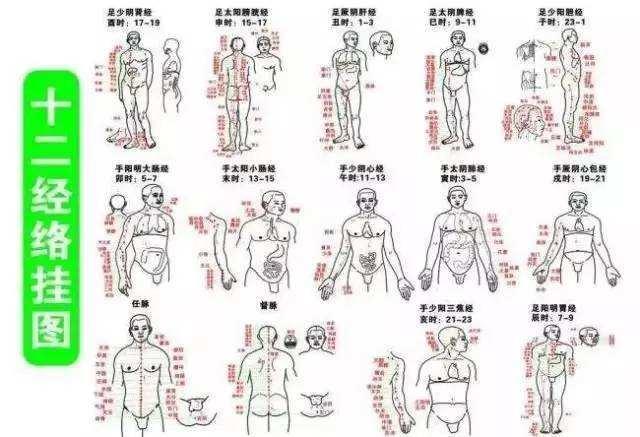 久病入絡,久痛入絡,治絡病的5類藥總結好了(絡脈瘀阻、絡脈絀急、絡虛不榮)
