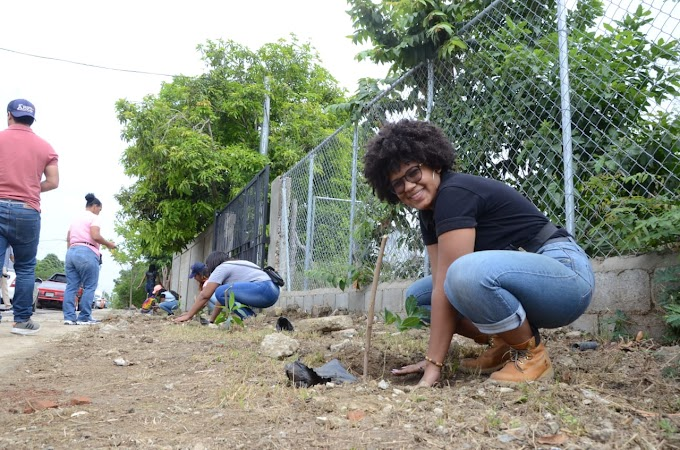 Ayuntamiento de Santiago ejecuta segunda jornada de reforestación en perímetro exterior Parque Central