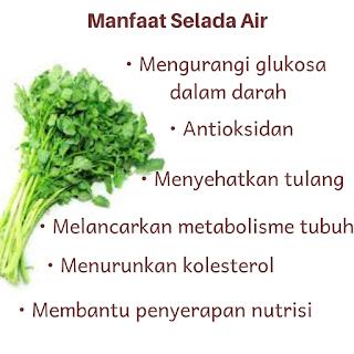 Manfaat selada air