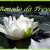 Pausa para reflexões – A Reação das Trevas! - 09/02/2014