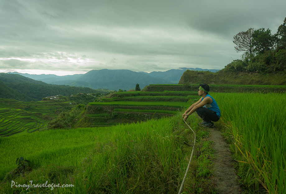 At Maligcong Rice Terraces of Bontoc, Mountain Province