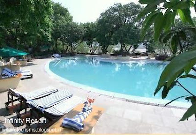 infinity-resort-hotel-ramnagar-nainital
