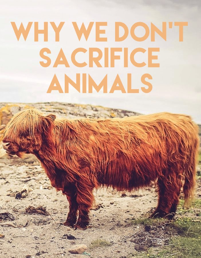 Why We Don't Sacrifice Animals