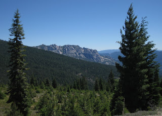 View of the Castle Crags framed by evergreens, Mt. Shasta, California