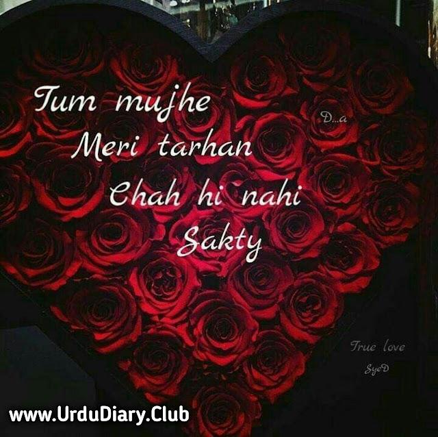 Tum Mujhe meri tarhan chah hi nahi sakty