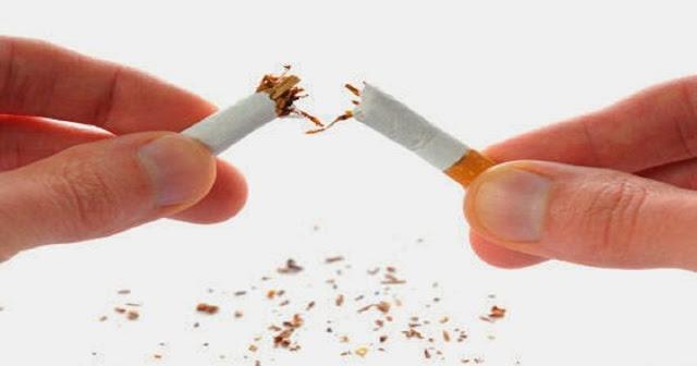 plante-pour-arrêter-de-fumer