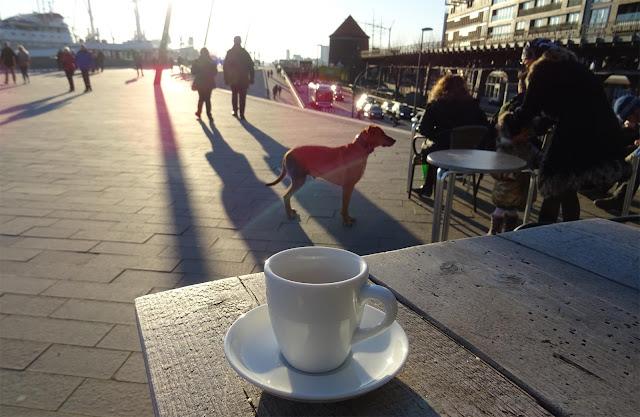 Tasse Kaffee auf der Elbpromenade am Hafen Hamburg in der Sonne