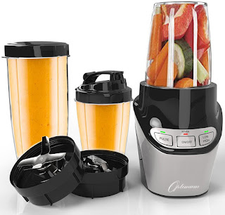 Froothie Nutri Force - a mini power blender