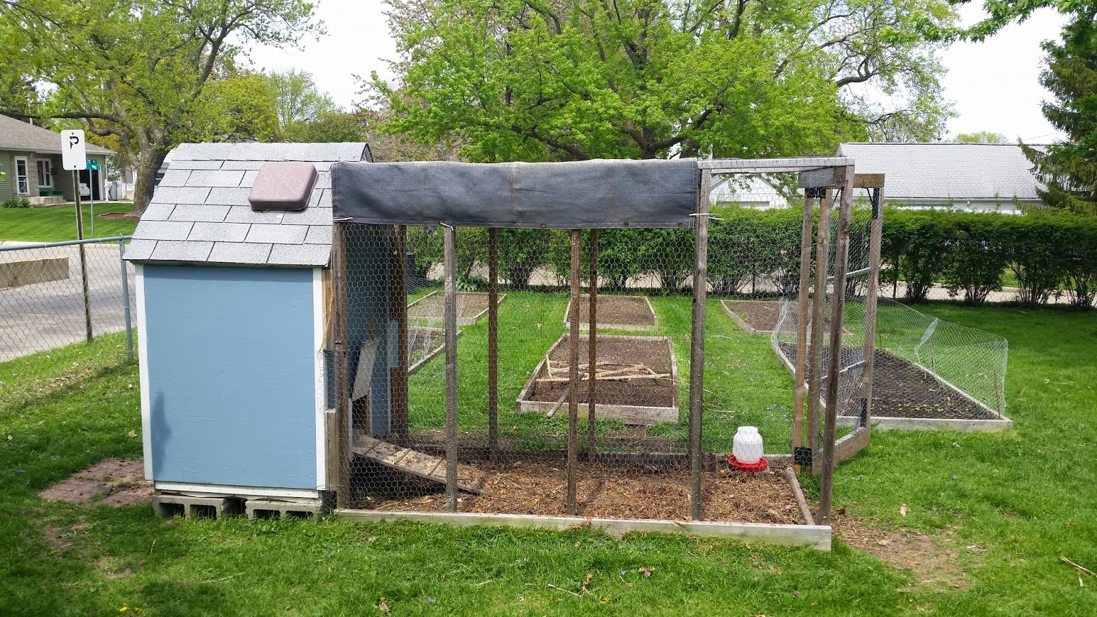 How to clean a chicken coop naturally - Homegrown in the Valley