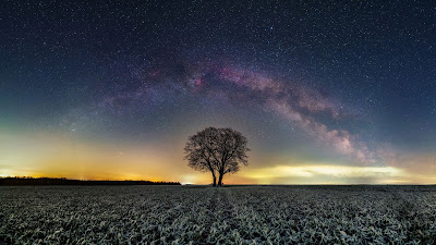 Wallpaper only of the tree of our galaxy at night