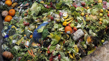 food production globally wasted
