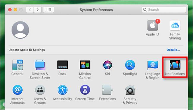 """في تفضيلات النظام على Mac ، حدد """"الإشعارات""""."""
