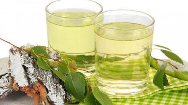 "Brezove ""suze"": kakva je korist od brezovog soka?"