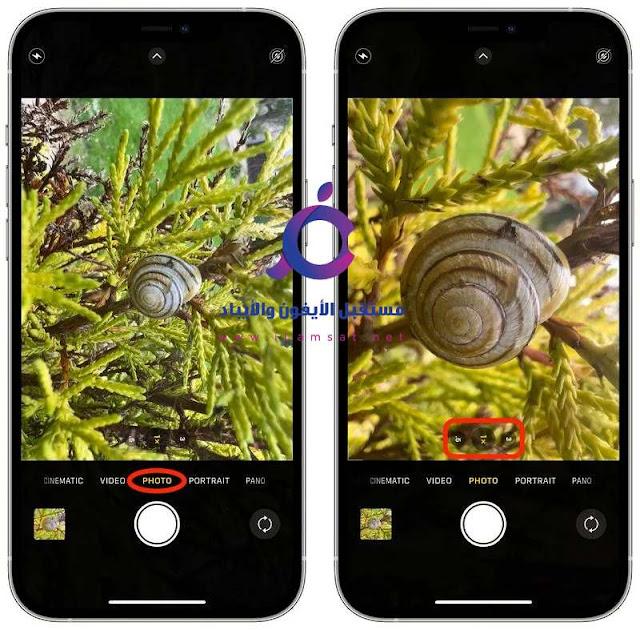 iPhone 13 Pro: كيفية التقاط صور فوتوغرافية ماكرو