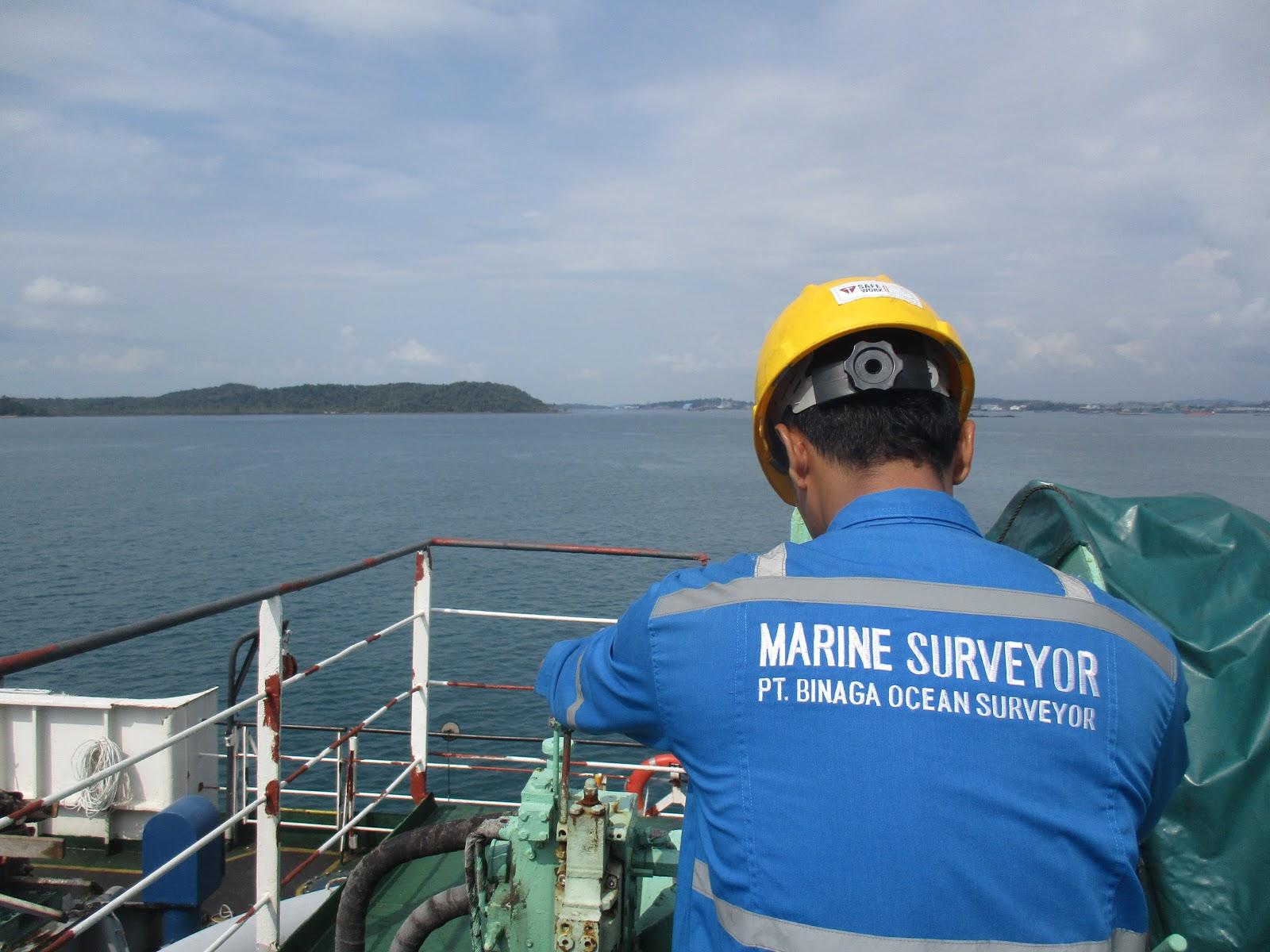 Surveyor - ear with an eye in the port