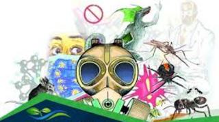 الإستعمال المفرط للمبيدات الحشرية وبال على الأرض والصحة والفلاحة