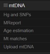 YFull mtDNA menu
