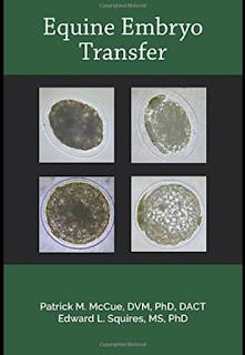 Equine Embryo Transfer