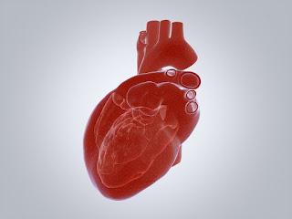 Defectos cardíacos congénitos