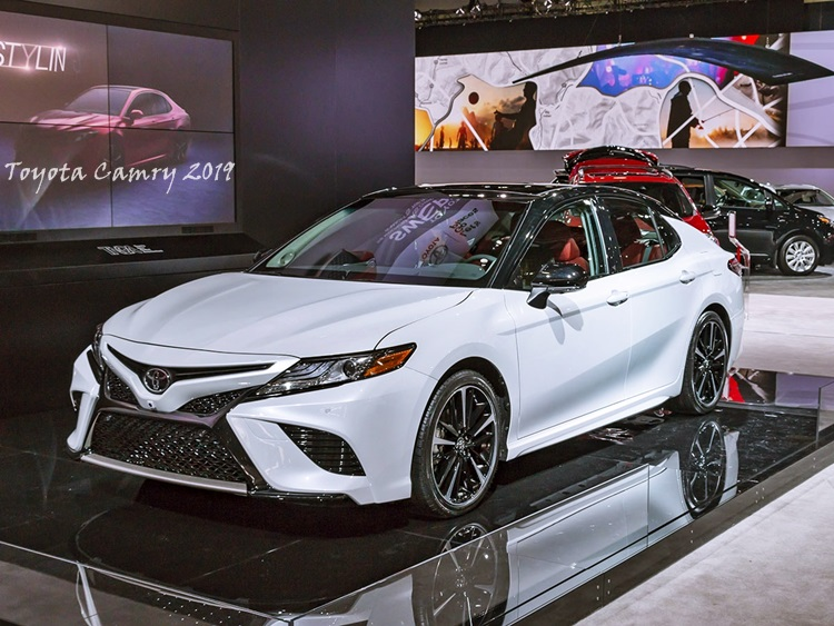 2019 Toyota Camry Review, Price, Specs & Models
