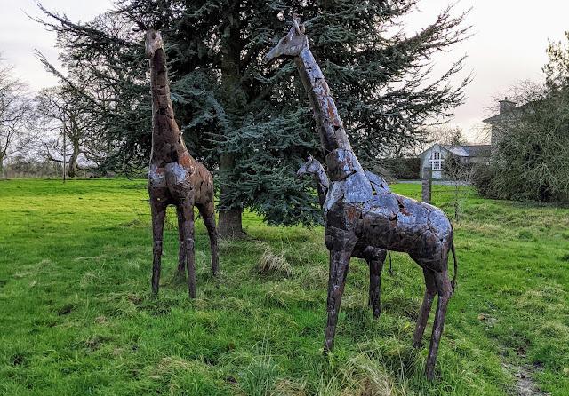 Giraffe sculptures at Burtown House and Gardens near Kilkea Castle in South Kildare
