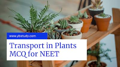 Transport in Plants MCQ
