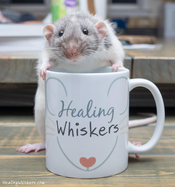 Vincent with a Healing Whiskers mug