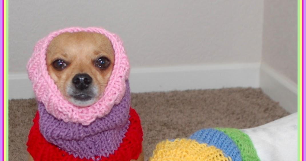 Free Crochet Pattern Dog Snood : Posh Pooch Designs Dog Clothes: Colors Dog Snood Free ...