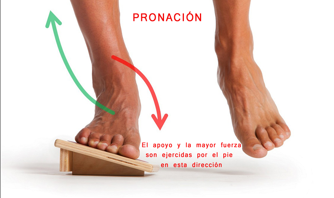 TERMINOLOGÍA PARA DUMMIES: Pronación/Supinación - POWER RUNNER
