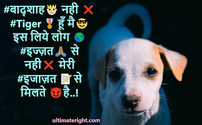Hi friend here you will see badmashi status haryanavi 2020 badmashi status in hindi dadagiri status in hindi khatarnak attitude status in hindi bhaigiri status in hindi friends badmashi status in hindi killer status in hindi royal attitude status in hindi 2020